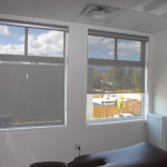 Altex Aleo Roller Shade (Chirpractor Treatment Room)
