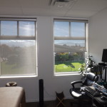 Altex Aleo Roller Shade (Therapy Room)